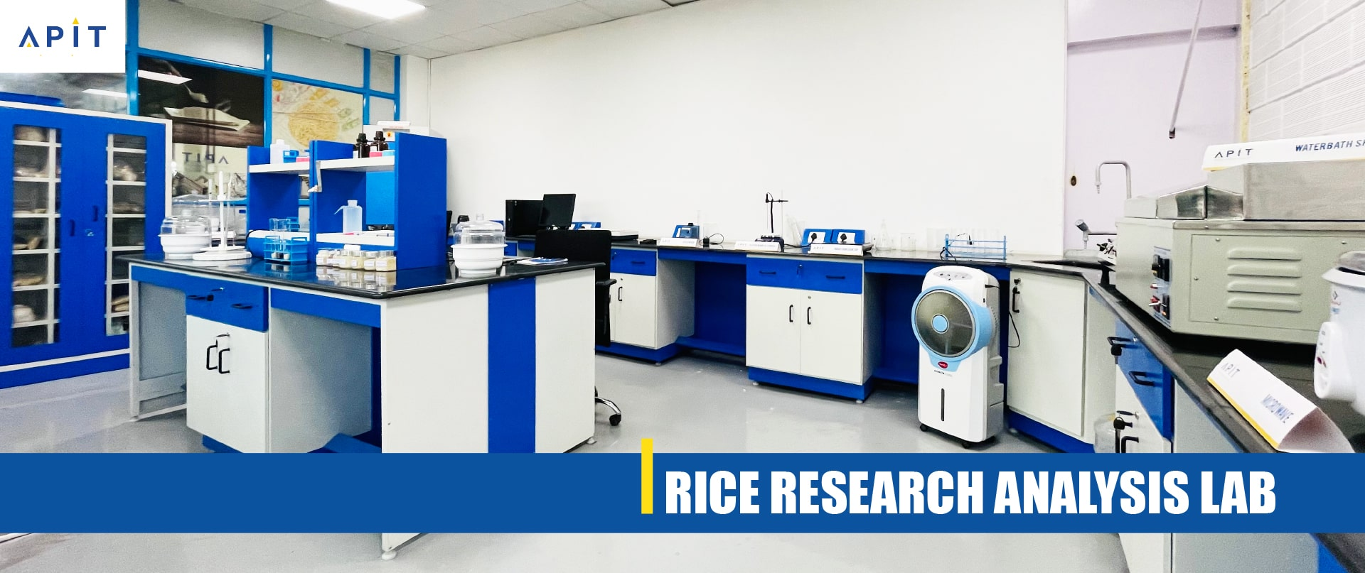 Rice Research & Analysis